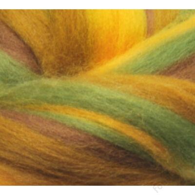 Multicolor ausztrál  merinó  szalaggyapjú 1554 Őszi erdő